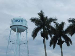 Water Tower & Palm Trees